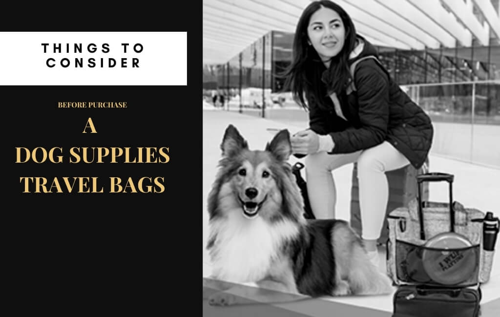 Features to Consider In the Best Dog Supplies Travel Bags